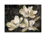 The Magnolia Tree Giclee Print by John Seba