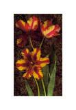 Decorative Tulips I Giclee Print by John Seba