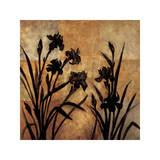 Iris Silhouette I Giclee Print by Erin Lange