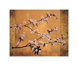 Cherry Blossoms Giclee Print by Erin Lange