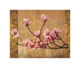 Pink Magnolias Giclee Print by Erin Lange