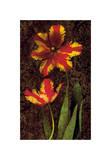 Decorative Tulips II Giclee Print by John Seba