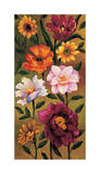 Floral Bouquet II Giclee Print by Brian Francis