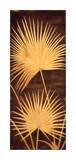 Fan Palm Triptych II Giclee Print by David Parks