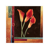 Orange Callas Giclee Print by Jill Deveraux