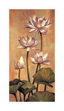 White Lotus Giclee Print by Jill Deveraux