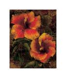 Hibiscus I Giclee Print by John Seba