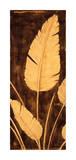 Tropical Palm Triptych II Giclee Print by David Parks