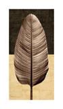 Palm Leaf II Giclée-tryk af John Seba