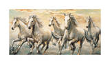 Wild Horses Giclee Print by Ralph Steele
