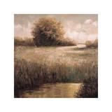 Hillside Pond II Giclee Print by Craig Palmer