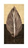 Palm Leaf I Giclée-tryk af John Seba