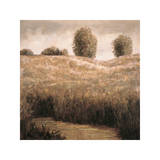 Hillside Pond I Giclee Print by Craig Palmer
