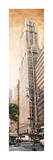 The Woolworth Building Giclee Print by Matthew Daniels