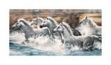 Running Wild Giclee Print by Ralph Steele