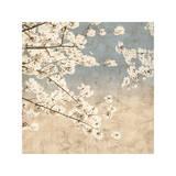 Cherry Blossoms II Impressão giclée por John Seba