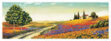 Morning in the Valley Giclee Print by Richard Leblanc
