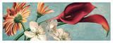 Luce e Colore II Giclee Print by Eva Barberini