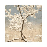 Cherry Blossoms I Wydruk giclee autor John Seba
