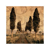 Tuscany I Giclee Print by Colin Floyd
