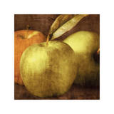 Apples Giclee Print by Caroline Kelly