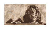 Lion Giclee Print by Andrew Cooper