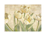White Tulips on Ivory Giclee Print by Lauren Mckee