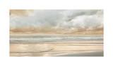 Ocean Tide Impressão giclée por John Seba