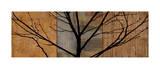 Arboreal I Giclee Print by Chris Donovan