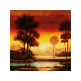 Evening Light I Giclee Print by Neil Thomas