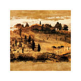 Tuscan Countryside II Giclee Print by Colin Floyd