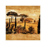 Tuscan Countryside I Giclee Print by Colin Floyd