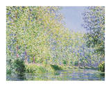 The Epte River near Giverny Wydruk giclee autor Claude Monet