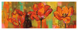 Magical Tulips Giclee Print by Nicole Sutton
