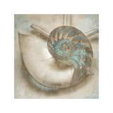 Coastal Gems IV Reproduction procédé giclée par John Seba