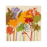 Colorful Bloom II Giclee Print by Erin Lange