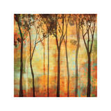 Magical Forest I Giclee Print by Chris Donovan
