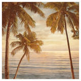 Palms on the Water II Giclée-tryk af John Seba