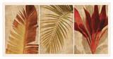 Palm Vista I Giclee Print by John Seba