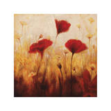 Poppies and Daisies I Giclee Print by Natalie Carter