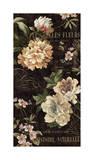 Fleurs Antique II Giclee Print by Deborah Devellier