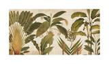 Palm Medley Giclee Print by Chris Donovan