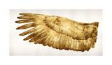 Golden Wing I Giclée-tryk af Kate Bennett