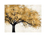 Golden Blossoms Giclee Print by Kate Bennett