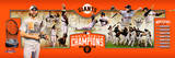 "San Francisco Giants 2014 World Series Champions Photoramic - 12"" x 36"" Photo"