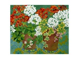 Red and White Geraniums in Pots, 2013 Giclee Print by Jennifer Abbott