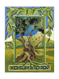 Green Olives, 2014 Giclee Print by Jennifer Abbott