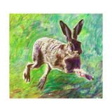 Joyful Hare, 2011 Giclee Print by Helen White