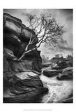 Outcrop Prints by Martin Henson