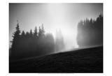 Misty Weather III Prints by Martin Henson